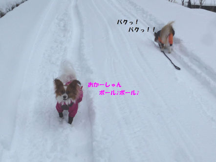 2016雪遊び