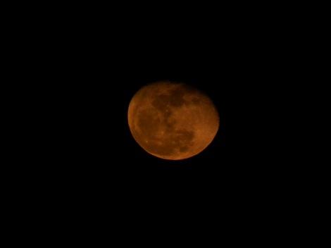 赤い月1228