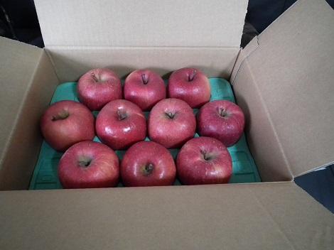 りんごさん224-5