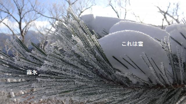 霧氷と積雪は別物