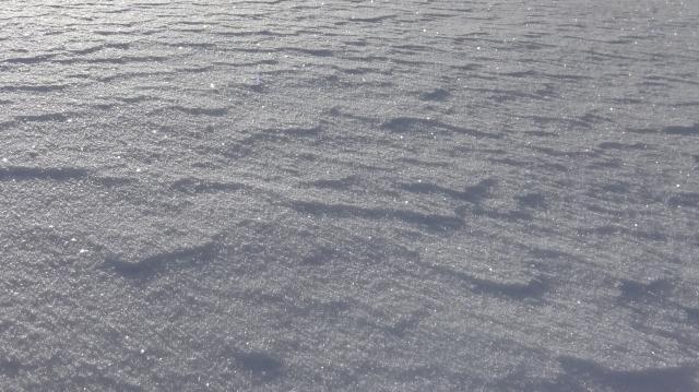 雪面に風紋が