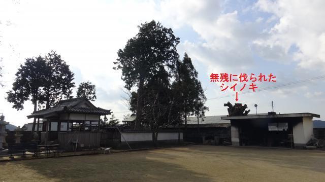 神社と隣接地との境にある