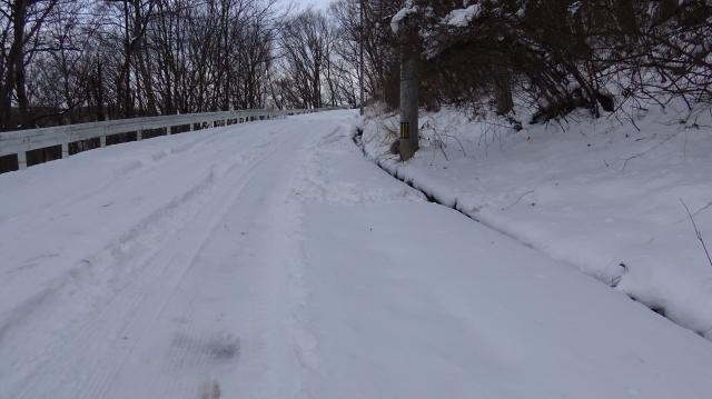 完全に雪道となった