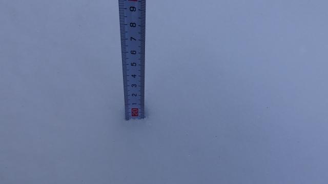 積雪は20センチ