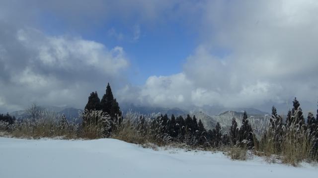 矢筈山 (1849m) は雲の中にお隠れ