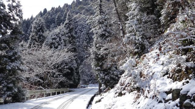 淡路島では珍しい雪景色 10時37分