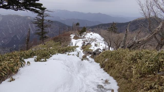 登山道をふり返る