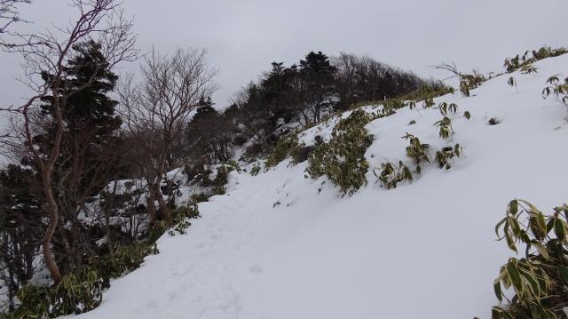 登山道には10-20センチぐらいの積雪