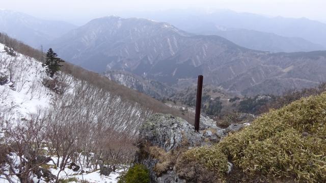 祖谷渓を見下ろす