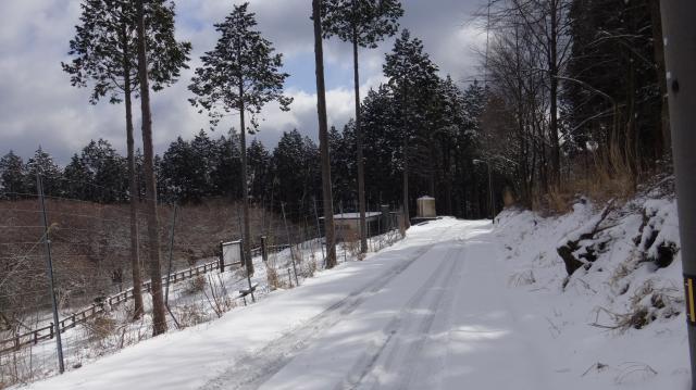 船窪オンツツジ公園