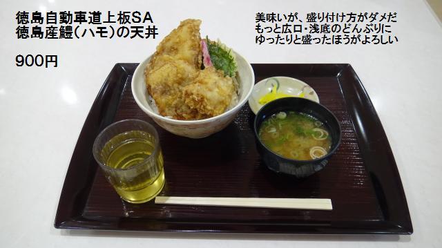 徳島産鱧の天丼 900円