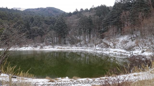 夫婦池は凍結していない
