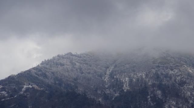 西島駅から上は霧氷のようだ