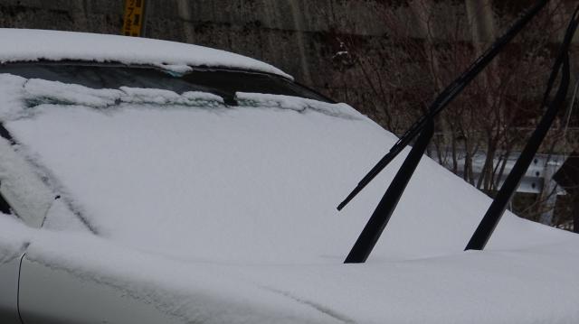 積雪は3センチぐらい