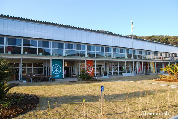 保田小学校2