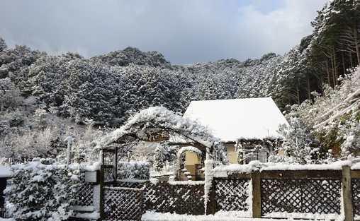 20160219 雪景色