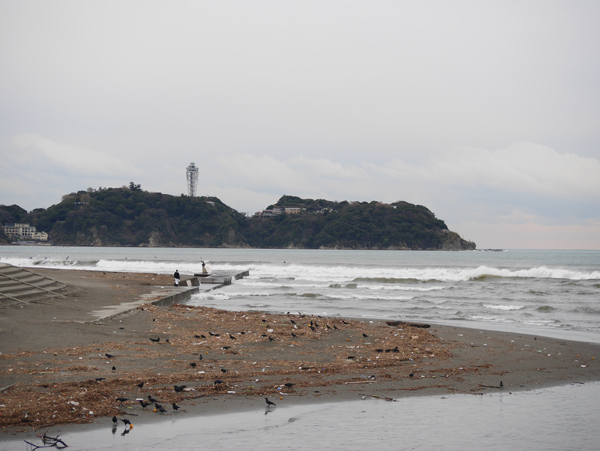 海は荒れていた。