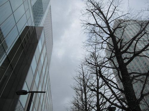 16.03.15.つれづれ1