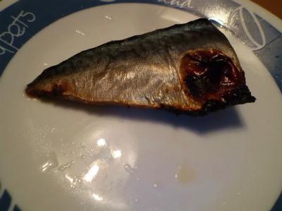 2.20鯖の付け焼き