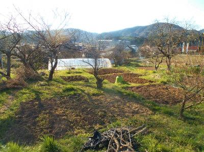 3.27穏やかな春の畑