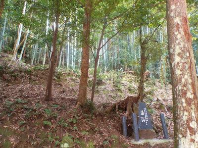 3.29玉作神社5