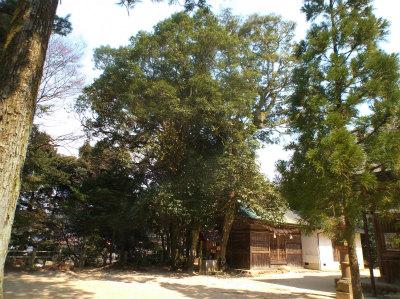 3.29玉作神社2