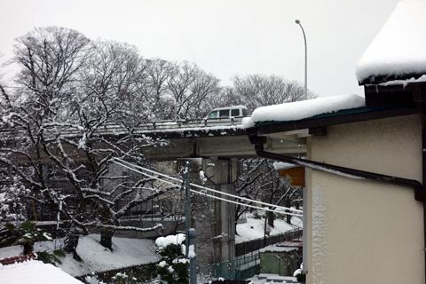 silver_snow_2.jpg