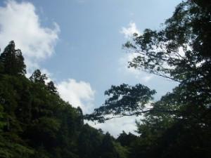 20091110_744755.jpg