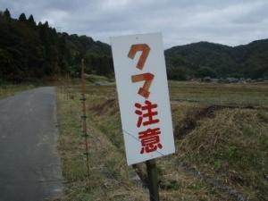 20091110_744919.jpg