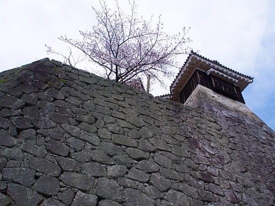 松山城2016-6