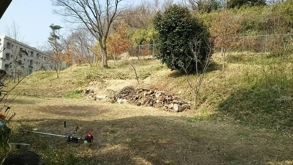 里山草刈り3月