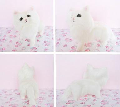 前から白猫ちゃん
