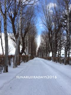 20160229_road.jpg