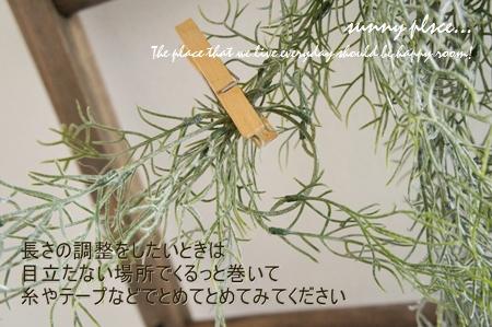 spa bush4 blog