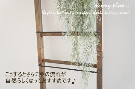 spa bush5 blog