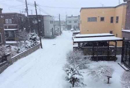 またまた雪ですよ~