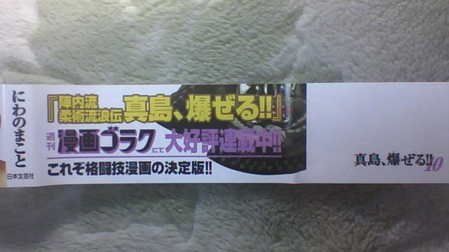 陣内流柔術流浪伝 真島、爆ぜる!! 10巻 帯B