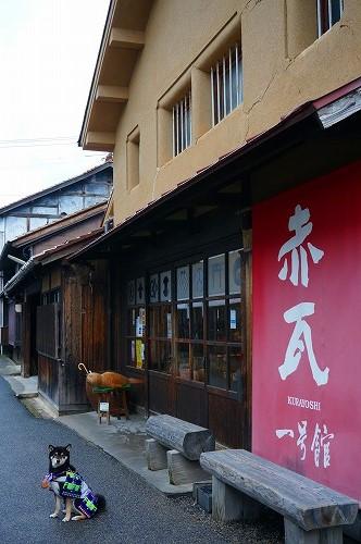 鳥取21 (5)