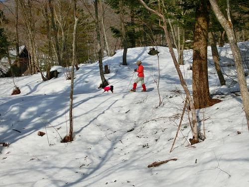 もみのき森林公園 (7)