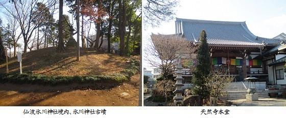 b0116-7 氷川神社-天然寺