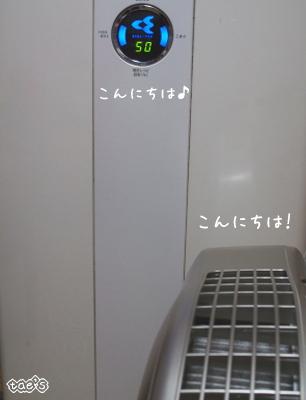 o-4024.jpg