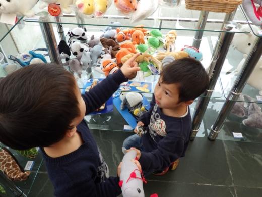 葛西臨海水族館 (9)