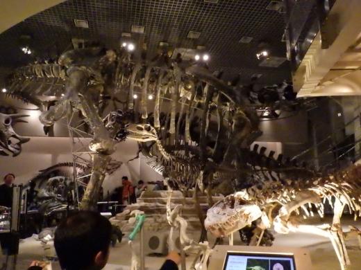 恐竜博2016 (35)