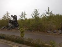 タヌキ岩160201