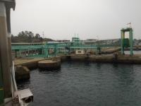 桜島フェリーポート160201