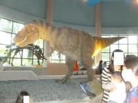 恐竜160305