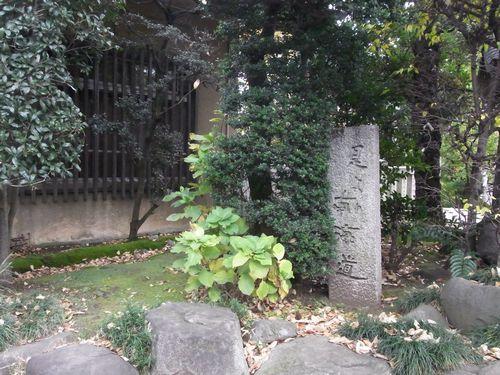 氷川神社9 (2)