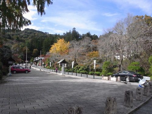 宝登山24