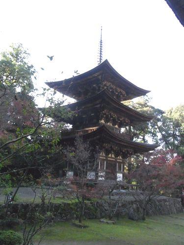 西明寺14
