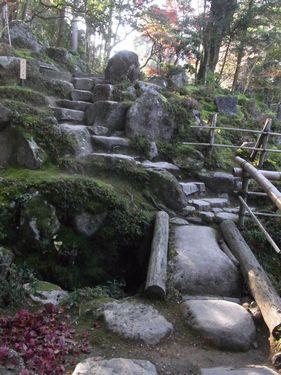 西明寺25